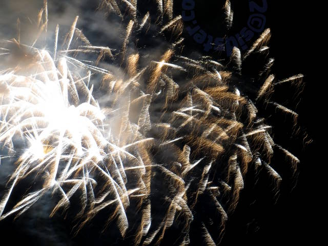 fireworks: palm leaves and strands