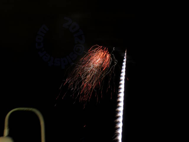 fireworks: withered rose
